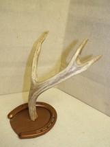 Deer horn on horse shoe display stand - $25.00