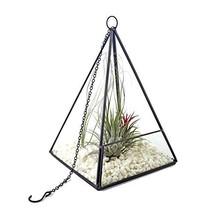 Homcomoda Plants Glass Container Terrarium Holders Flower Pots Box for H... - $19.22