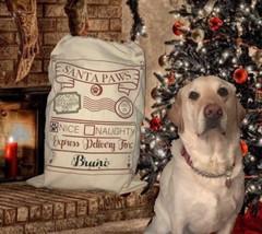 Pet Santa Sack, Dog Santa Bag, Pet Christmas sack Pet Christmas Sack, Ca... - $18.55
