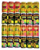 Hawaiian Sun Drinks 24 Pack Sampler (6 cans of 4 Flavors) - $78.95