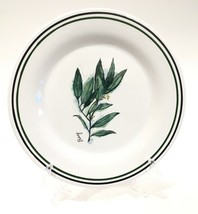 """Williams Sonoma 'Bay' Green & Black Banded Herb 8-1/2"""" Salad Plate Portugal - $14.99"""