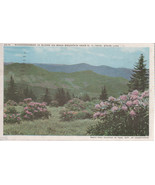 "Rhododendron in Bloom N.C.-TN. State Line 3 1/2"""" X 5 1/2""  Used Linen P... - $2.50"