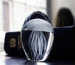 Multicolored Jellyfish In Clear Glass Paperweight Decor Art Terrarium Fi... - $43.98