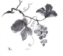 Akimova: GRAPE, original, watercolor, chineese brush - $9.00