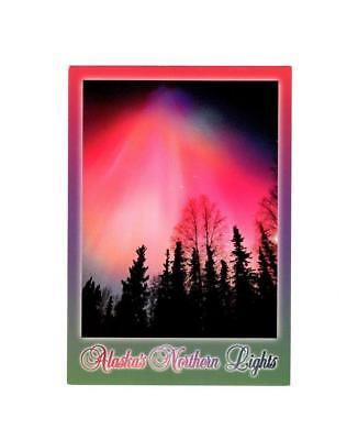 "PICTURE POSTCARD- ""POLAR LIGHTS"" ALASKA'S NORTHERN LIGHTS-FIRST DAY ISSUE  BK8"