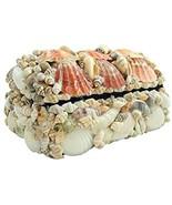 Real Natural Seashell Jewelry Trinket Box Nautical Sea Shell Beach Home... - $25.19
