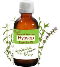 Hyssop Oil- Pure & Natural Essential Oil- 50ml Hyssopus officinalis by B... - $29.45