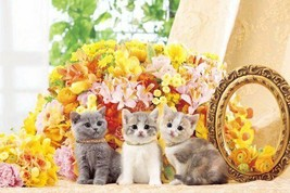 *1000 piece jigsaw puzzle Aim of the master flower Nyanko (50x75cm) - $64.48