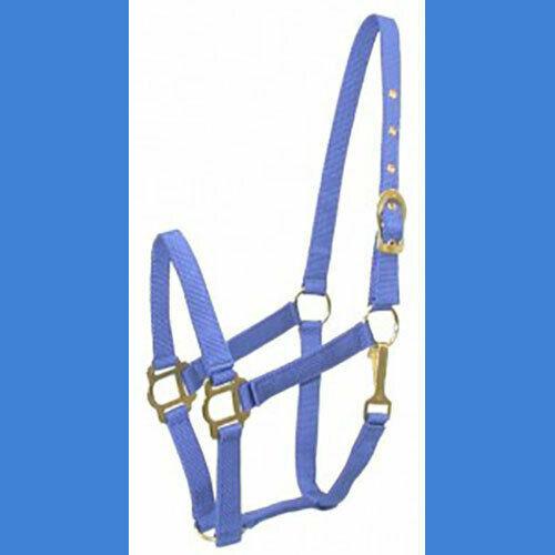 COB Arab Nylon Halter Classic NEW!  Blue