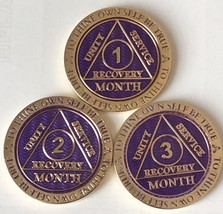 Set Of 3 Purple AA 1 2 3 Month Medallions Gold Plated Medallion Chip - $44.99