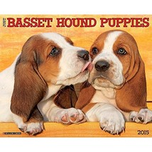 Basset Hound Puppies 2015 Wall Calendar - $15.09