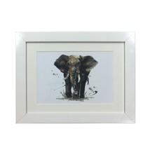 Selvatico Elefante Sarah Stokes Stampa Bianco Incorniciato da Parete 37X47X2CM - $30.89