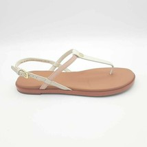 Cole Haan Womens Flora Thong Sandals Multicolor Buckle 6 B New - $32.64