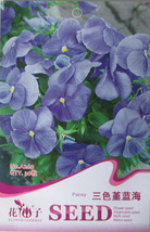 30 Pcs Blue Pansy Hardy Plant Seeds, Original Pack, Decorative Garden Fl... - $8.56