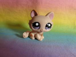 2008 Littlest Pet Shop Tan & Brown Crouching Kitten Cat Purple Dot Eyes #1444 - $8.90