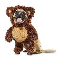 Bootique XS Dog Costume Teddy Bear Halloween Party X-Small - $19.99