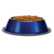 ProSelect Stainless Steel Dura-Gloss Metallic Dog Bowl, 16-Ounce, Sapphire - $8.90
