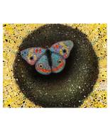 Butterfly 1 - $18.00+