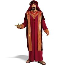 Halloween Lamp of Aladdin Arabian Cosplay Costume - $69.60