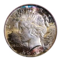 1923  Peace Silver Dollar Coin MS62 * RARE FOUND TONED *. 215 - $122.50