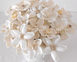 6 Seashell Flowers Bride Bouquet Beach Wedding Party Shell Floral Picks Inserts
