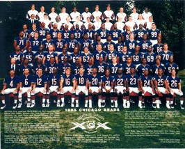 1995 CHICAGO BEARS 8X10 TEAM PHOTO FOOTBALL NFL PICTURE - $3.95