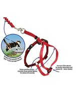 Petsafe Come With Me Kitty Med+Red Harness & Bungee Cat Leash - $12.99