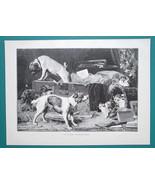 DOG Visit Cats Kittens - VICTORIAN Era Print - $19.80