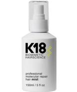 K18 Professional Molecular Repair Hair Mist, 5oz - $99.00