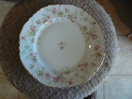 Hutschenreuther Maple Leaf dinner plate 8 available - $11.58