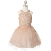 Blush Halter Neck Sequin Embroidery Lace Tiered Tulle Mini Flower Girl D... - $58.00+