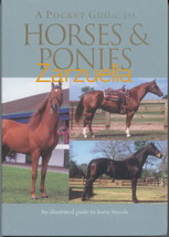 A Pocket Guide To Horses and Ponies : Illustrated -  New Softcover @ZB - $7.75