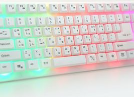 Zio Rainbow Korean English Keyboard USB Wired Membrane with Cover Skin Protector image 6