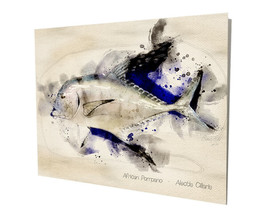 African Pompano Game Saltwater Fish Water Color Design 16x20 Aluminum Wall Art - $59.35