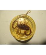 Vintage Lucite Scorpion Collector Yoyo - $16.82