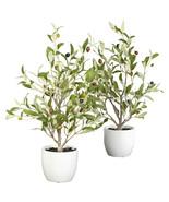 "18"" Olive Silk Tree w/Vase (Set of 2) - $63.47"