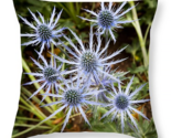 Spectacular sea holly flowers pillow thumb155 crop