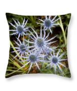 Spectacular Blue Stem Sea Holly, Throw Pillow, fine art, seat cushion, a... - $41.99+