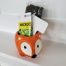 Fox Planter with Microgreens Seed Kit, gardening gift, ceramic animal planter