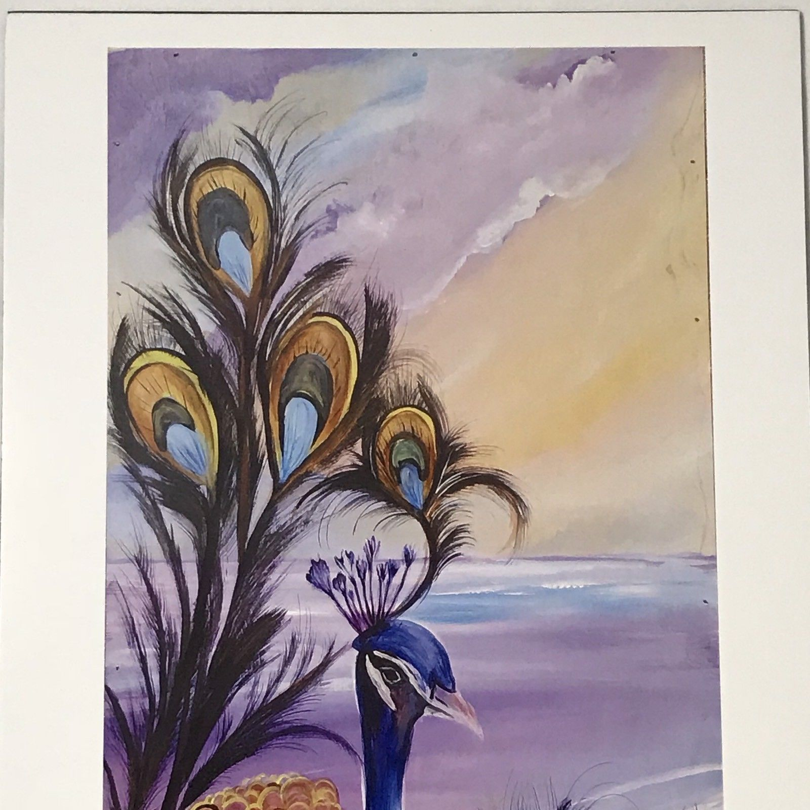 "Peacock By The Ocean Beach Art Print Signed BER 2016 11"" x 17"""