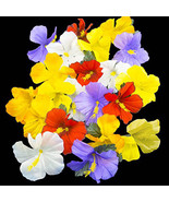 Artificial Hibiscus Flower Scatter Petals Tropical Hawaiian Luau Table D... - $7.69+