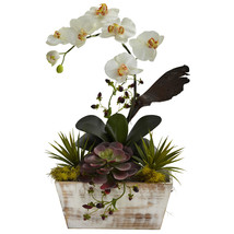 Orchid & Succulent Garden w/White Wash Planter - $66.89