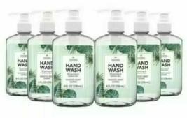 Natural Concepts Handwash 8 fl oz Hand Soap in Pump Dispenser, 6-pack NEW