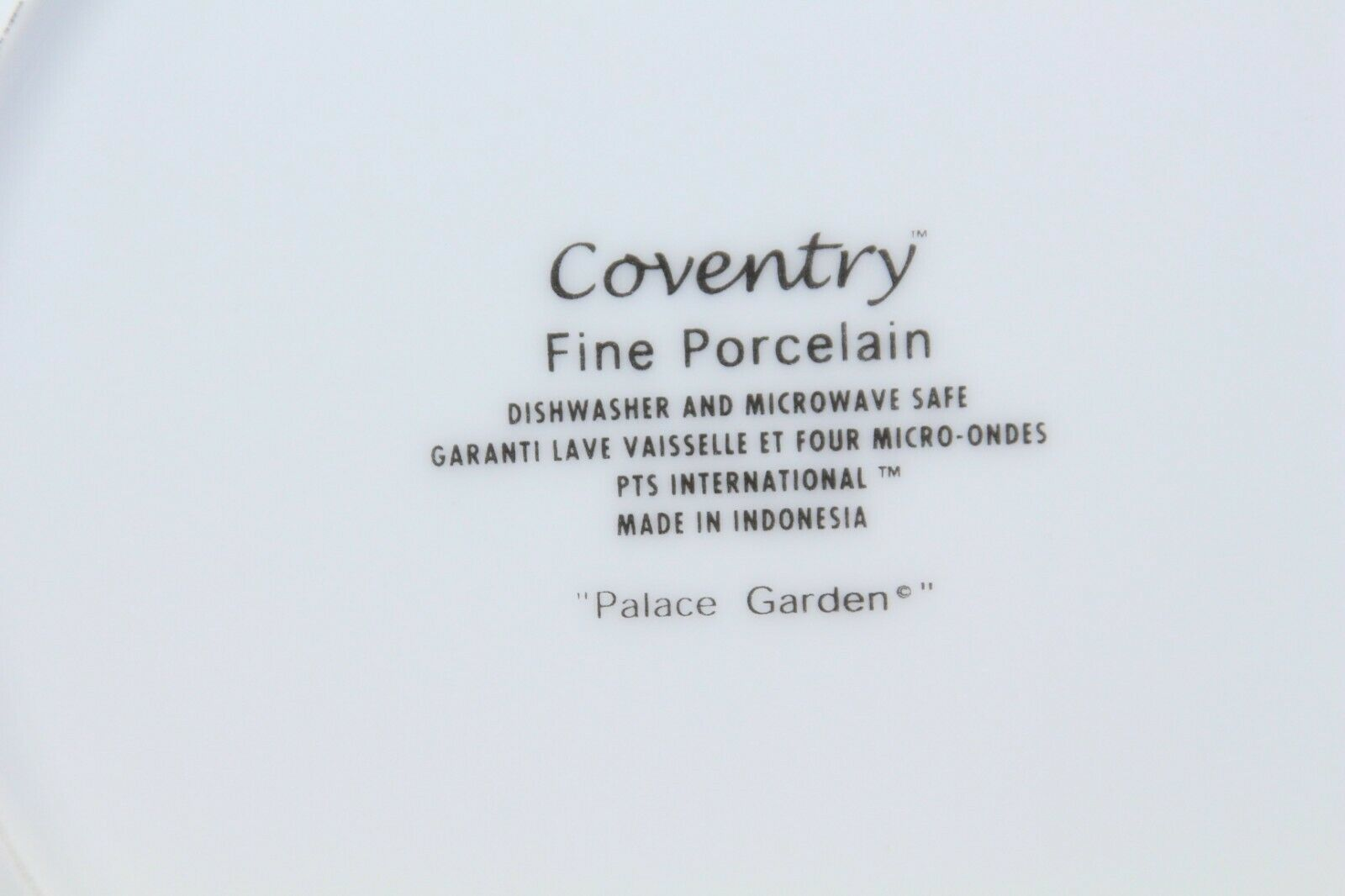 """Coventry Palace Garden Dinner Plates 10.75"""" Lot of 7 image 3"""