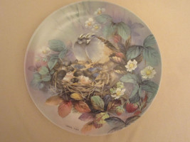 """TENDER LULLABY collector plate LENA LIU White-throated Sparrow NATURE""""S ... - $19.99"""