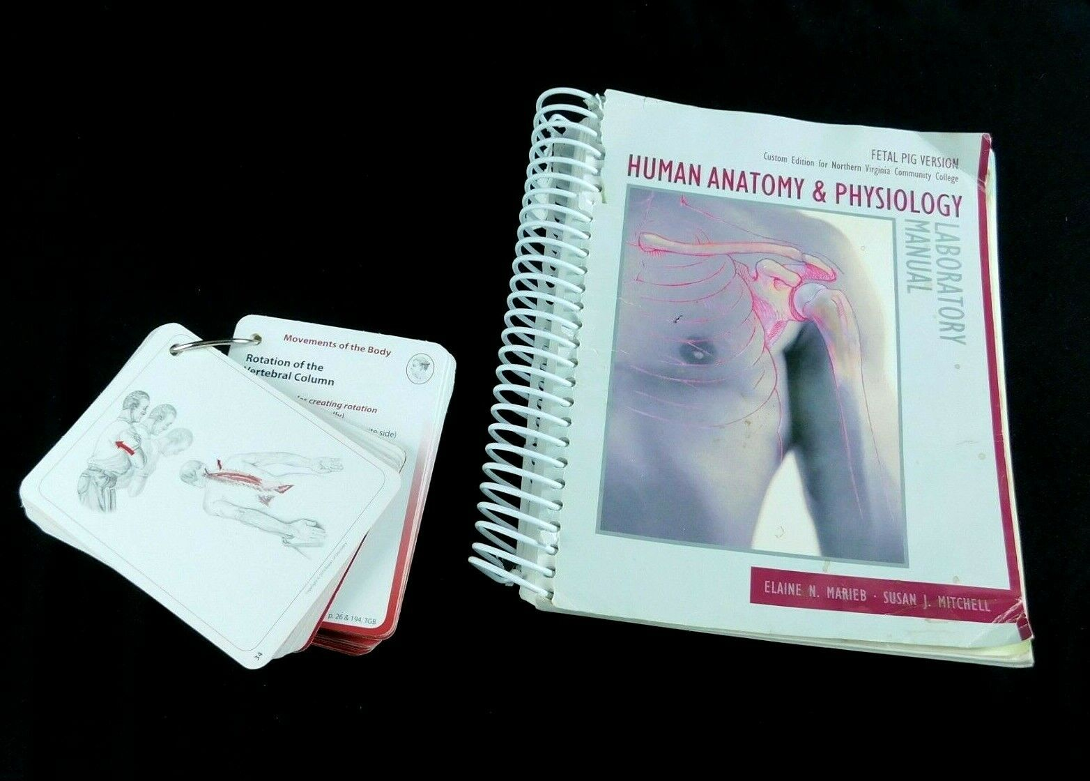 Primary image for Human Anatomy Physiology Lab Manual Fetal Pig 10th ED DVD Movement of Body Cards