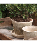 Aged and Antique Medium Planting Pot and Saucer - $59.40