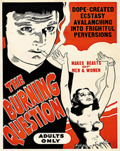 1930s Anti Drug Propaganda Cult Movie Poster Trippy Weed Pot Dope Political Gift - $12.38