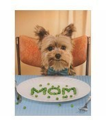 Avanti Press Dog Spells Mom With Peas Funny / Humorous Mother's Day Card - $5.45