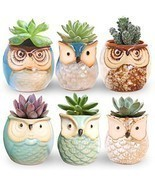 ROSE CREATE 6 Pcs 2.5 Inches Owl Pots, Little Ceramic Succulent Bonsai Pots - $22.16